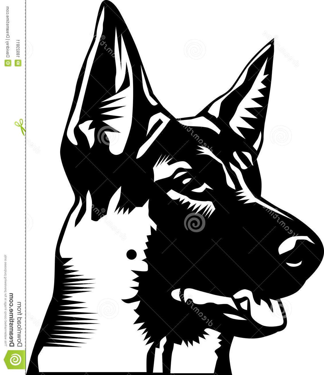 1125x1300 Best 15 German Shepherd Head Photos