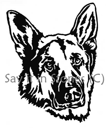 350x423 German Shepherd 4