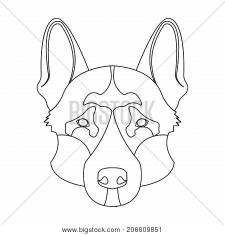 450x470 German Shepherd Images, Illustrations, Vectors