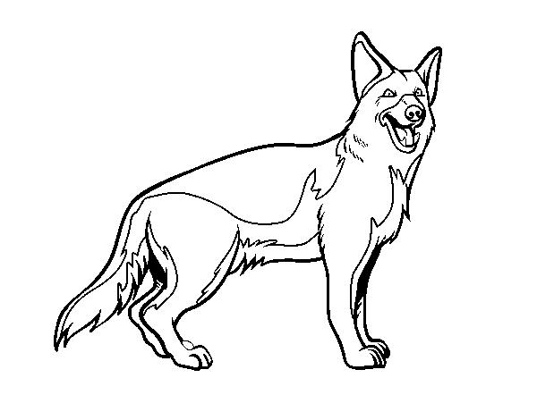 600x470 German Shepherd Coloring Page