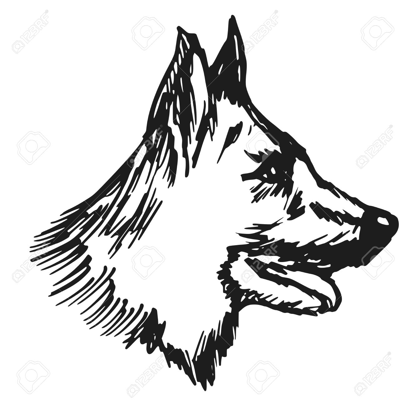 1300x1300 Hand Drawn, Sketch, Cartoon Illustration Of German Shepherd