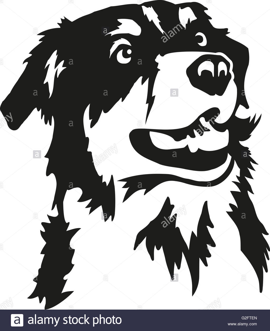 1137x1390 Australian Shepherd Clipart Australian Shepherd Head Drawing