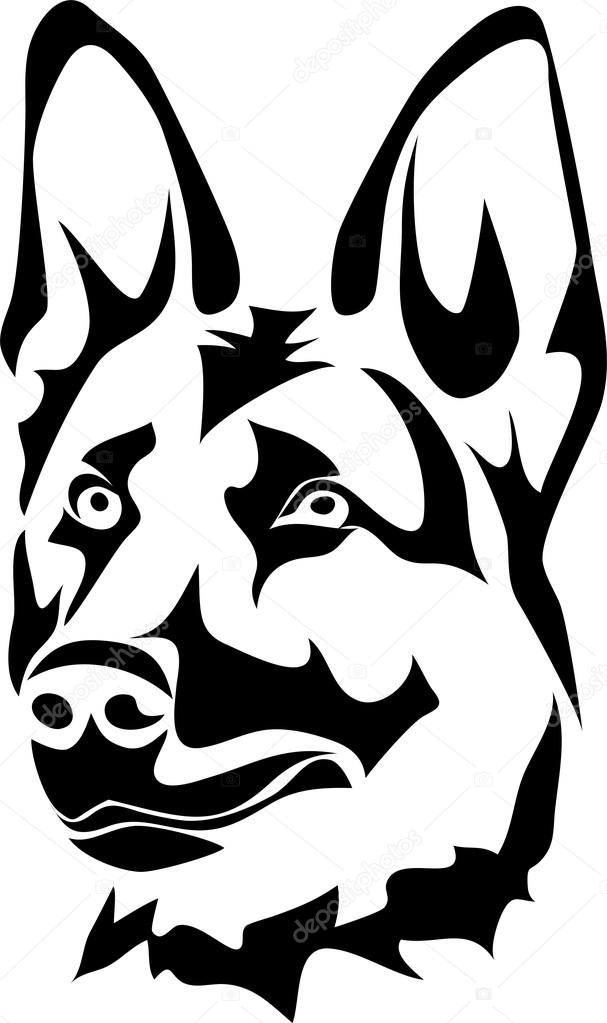 607x1023 Head Of German Shepherd Dog Stock Vector Bokononist