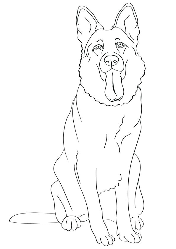 595x842 Great German Shepherd Coloring Pages Online Marvelous On Download