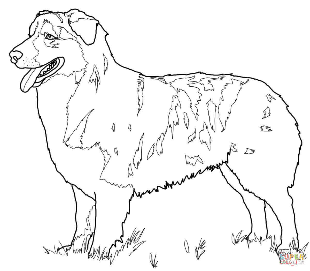 1200x1048 Australian Shepherd Coloring Page Free Printable Coloring Pages