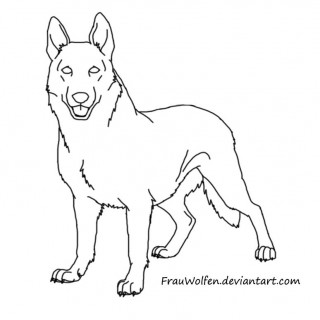 320x320 Tag For How Top Draw To German Shepard Dog Kids Paws Abilities