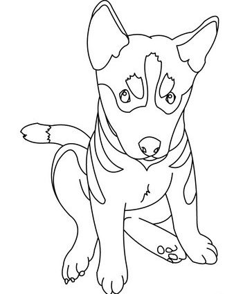 German Shepherd Line Drawing at GetDrawings.com | Free for personal ...