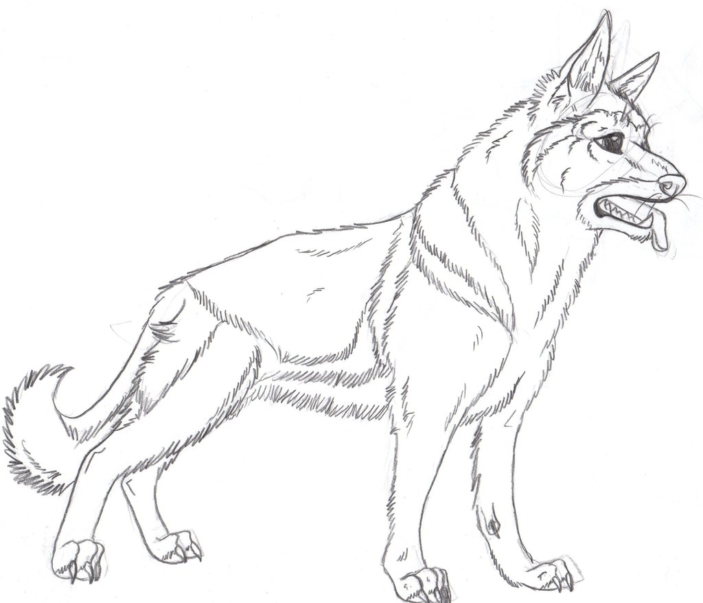 1024x878 Drawn German Shepherd Coloring Page