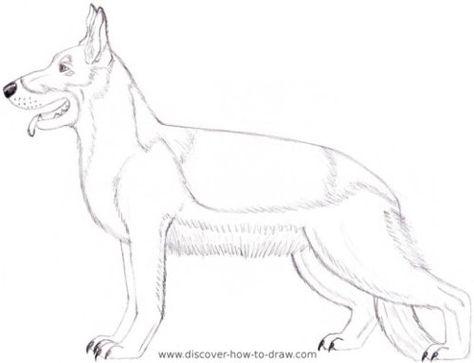 474x363 German Shepherd Dog Coloring Page Printable Instant By Loveloki