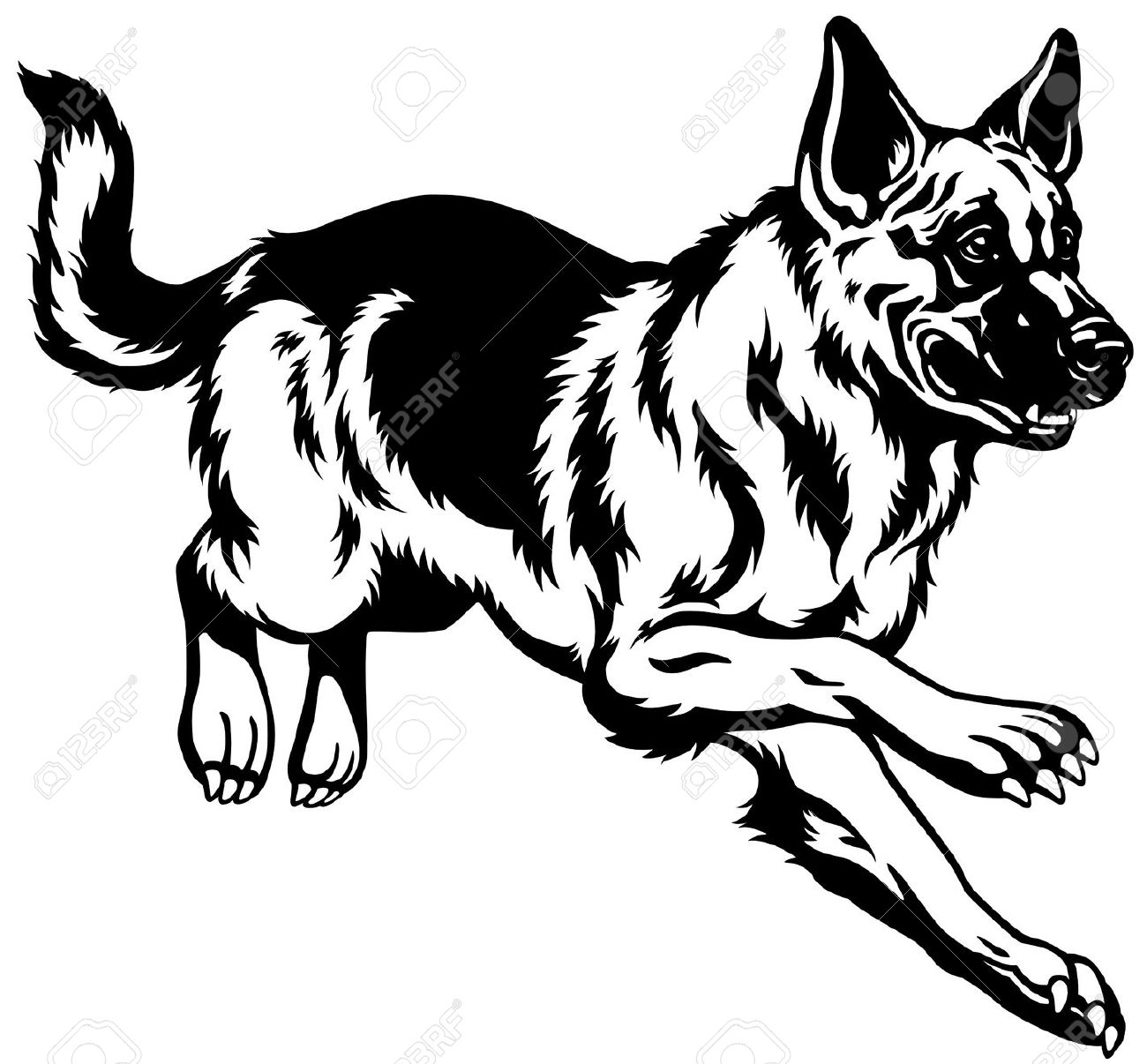 1300x1206 Image Result For Dog Breed Vectors Animal Silhouettes, Vectors