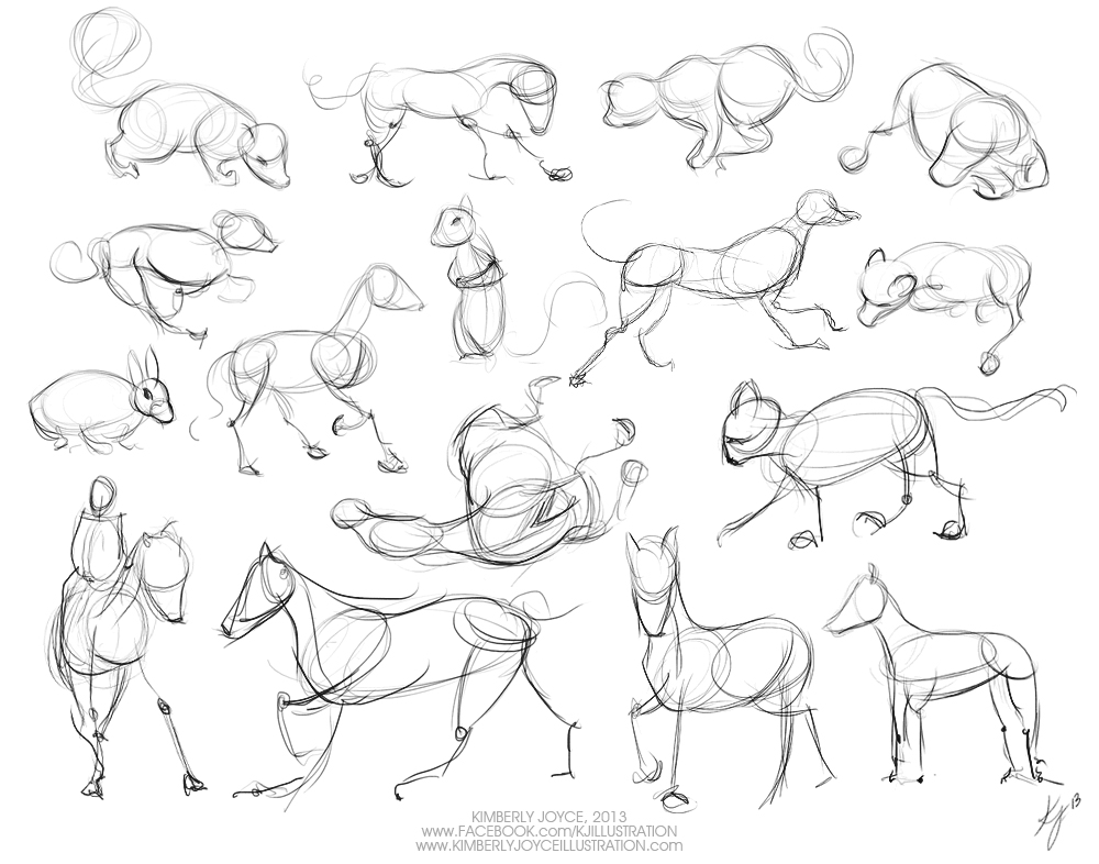 1000x786 Gesture Drawing Animals Day 05 Kimberly Joyce Illustration