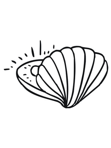360x480 Clam With Pearl Coloring Page Free Printable Coloring Pages