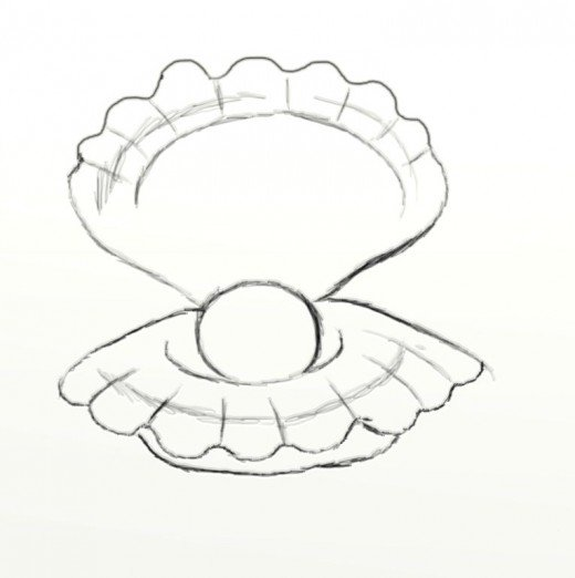 520x522 How To Draw A Clam Feltmagnet