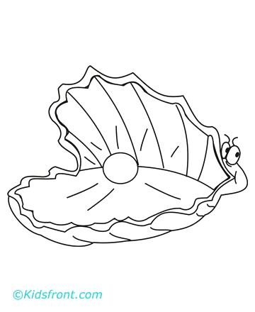360x440 Clam Coloring Page Clam Shell Coloring Page