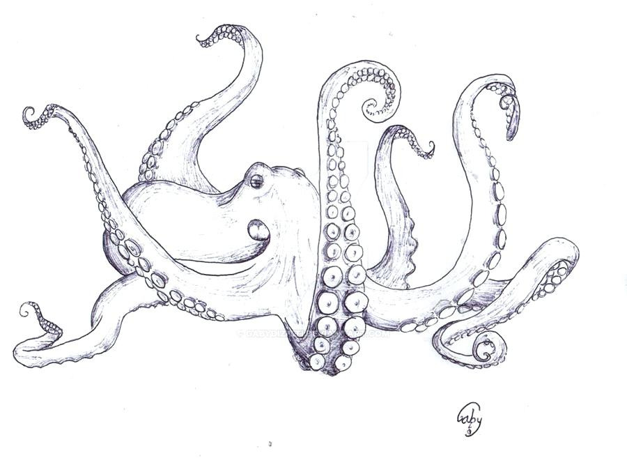 900x657 How To Draw Octopus Draw An Octopus Steps 8 And 9 Octopus