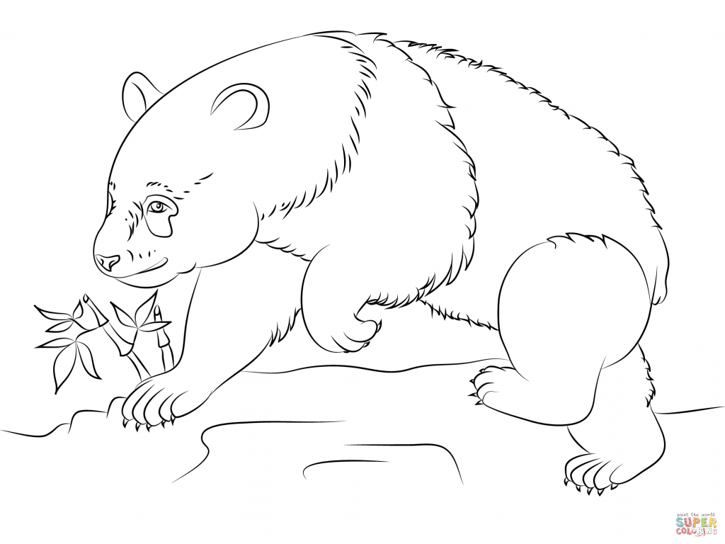 Giant Panda Drawing at GetDrawings.com | Free for personal use Giant ...