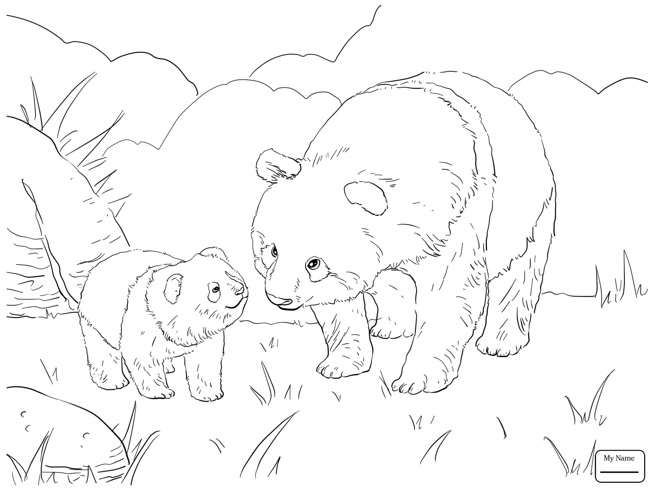 2089x1567 Coloring Pages Giant Panda Giant Panda Bear Mammals