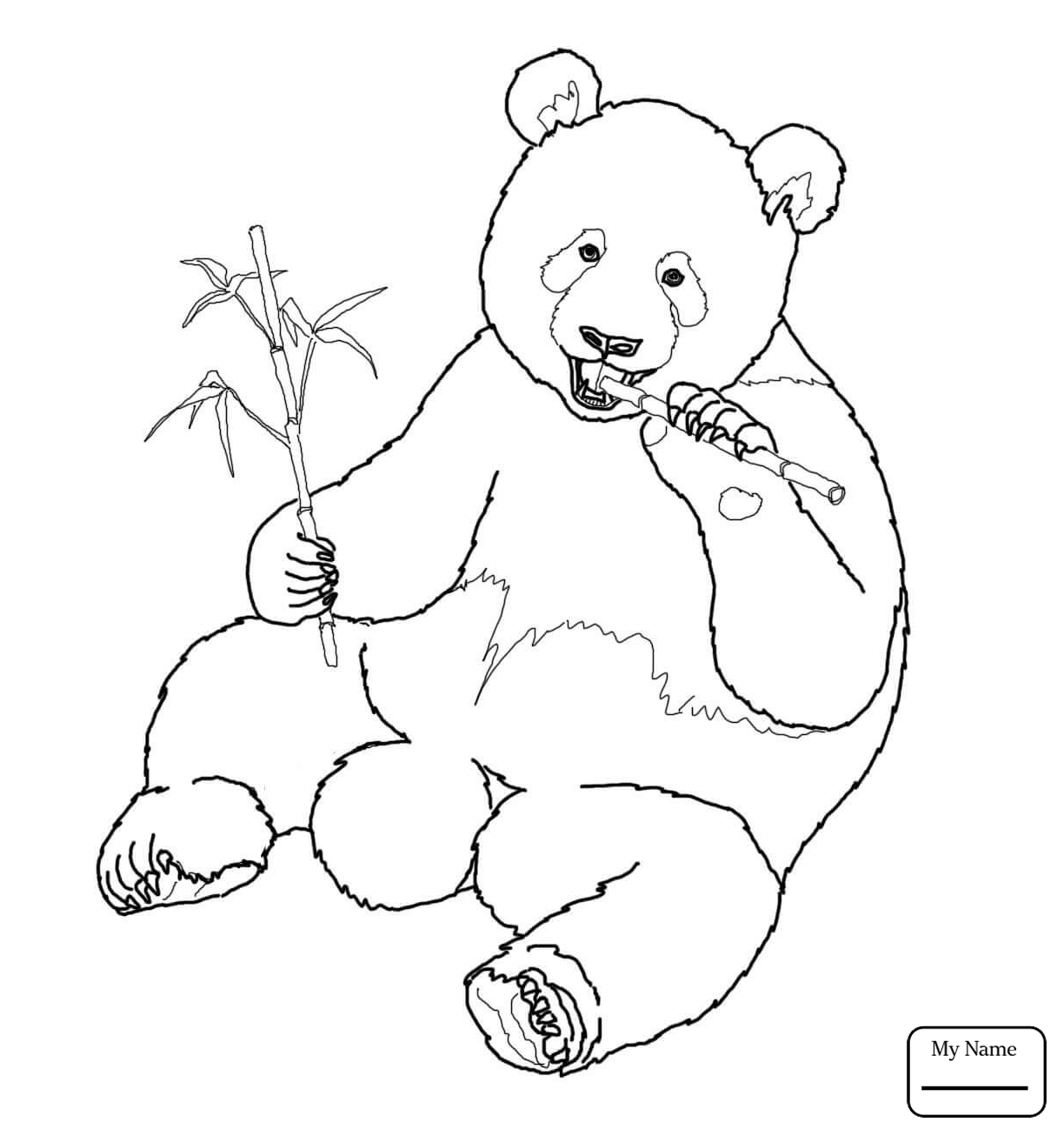 1224x1306 Mammals Giant Panda Giant Panda Coloring Pages For Kids
