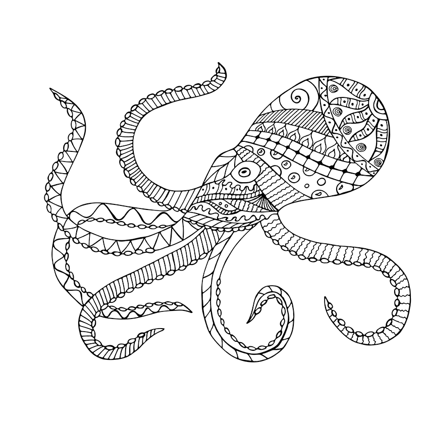842x842 Giant Squid Free Coloring Page • Adults, Animals Coloring Pages