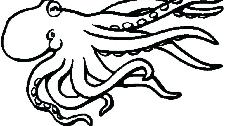 770x430 Squid Coloring Pages Giant Squid Coloring Pages View Larger