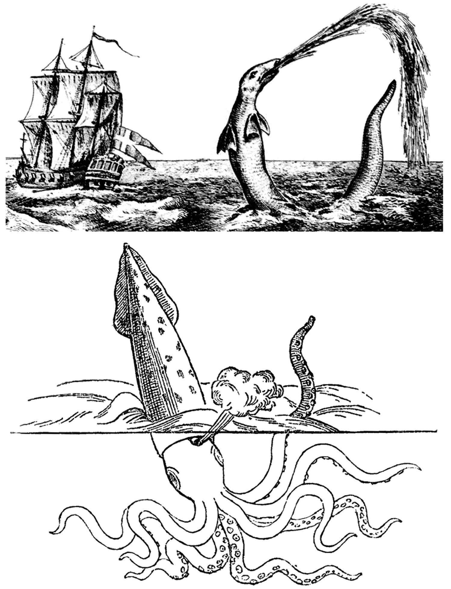 1500x1957 The Kraken when myth encounters science