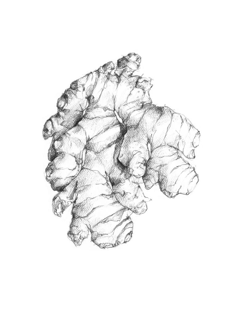 770x1011 Saatchi Art Ginger Drawing By Melia Blankenship