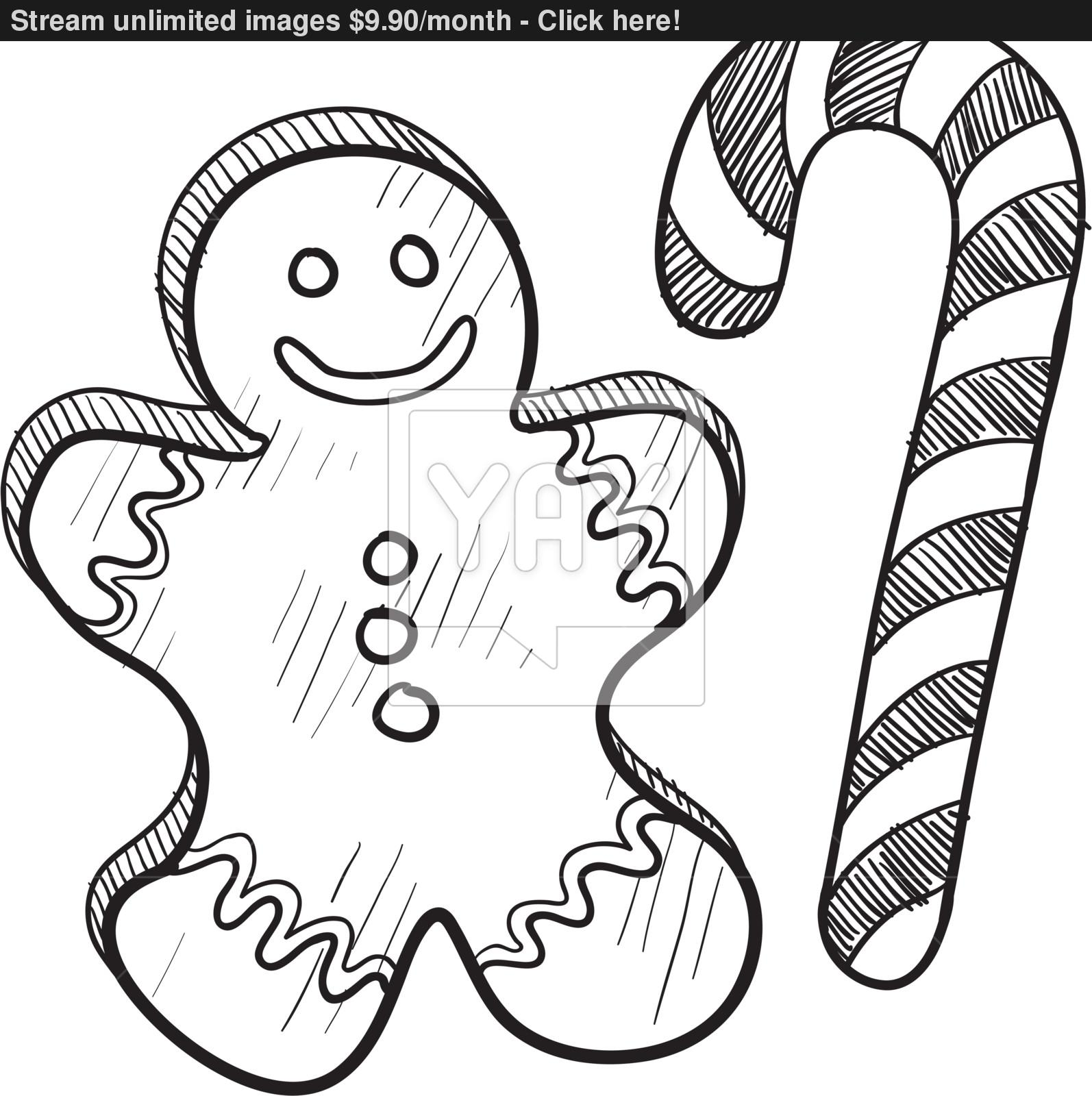 1594x1600 Christmas Gingerbread Man And Candy Cane Sketch Vector