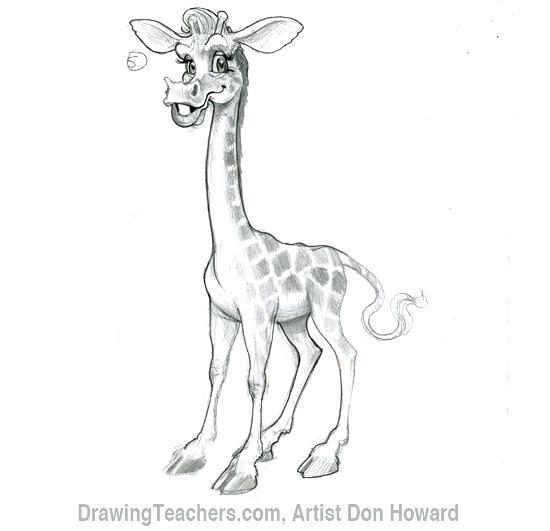 550x531 Giraffe Drawing Cartoon Giraffe 6 Baby Giraffe Cartoon Drawing Affan