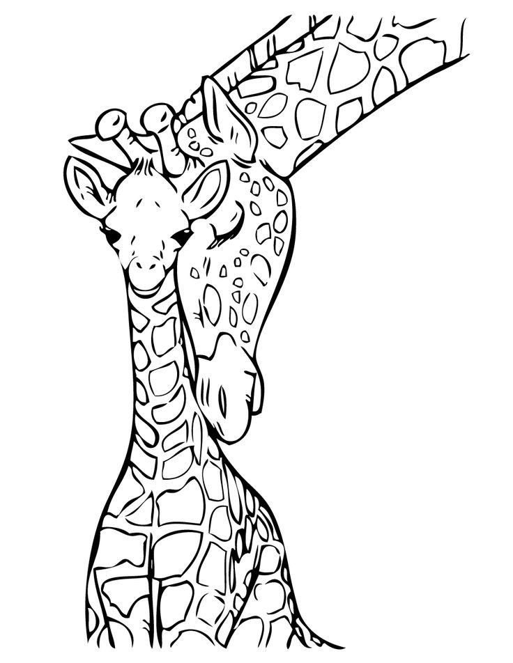 736x952 The Best Giraffe Colors Ideas On Giraffe Coloring