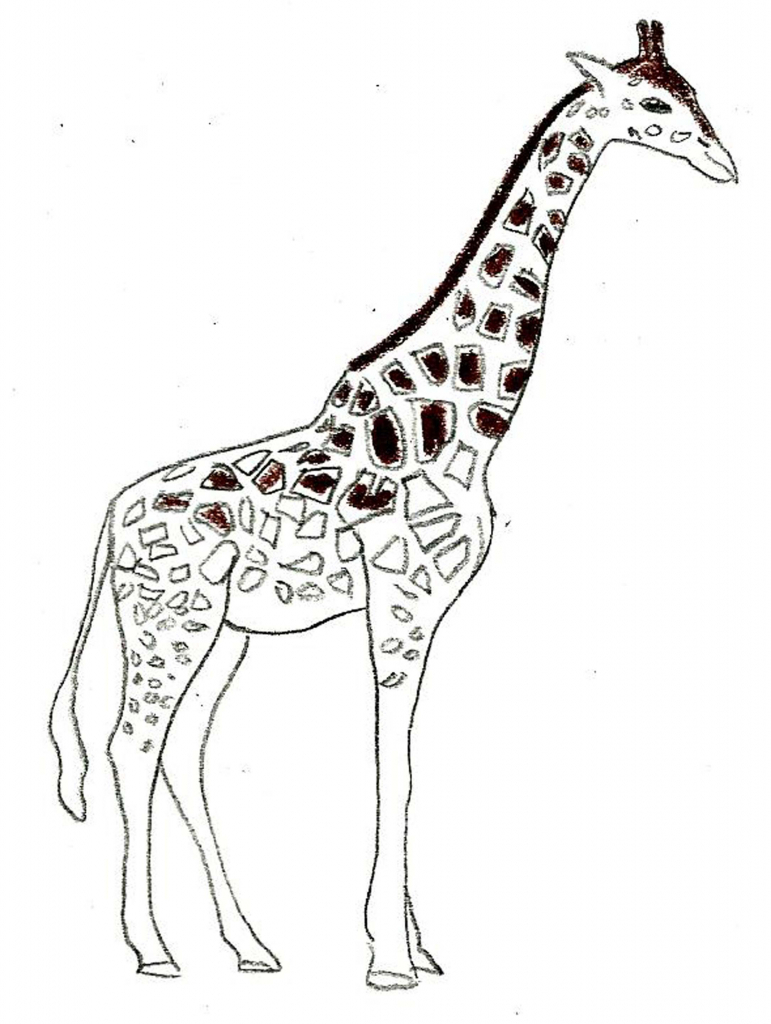 771x1024 Drawing Of A Giraffe How To Draw A Giraffe Draw Central Throughout