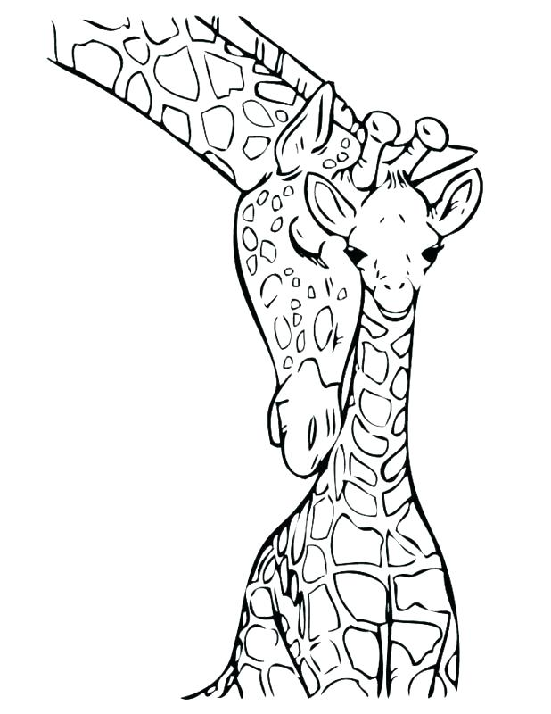 618x800 Coloring Pages Of Giraffes Cute Giraffe Coloring Pages Giraffe