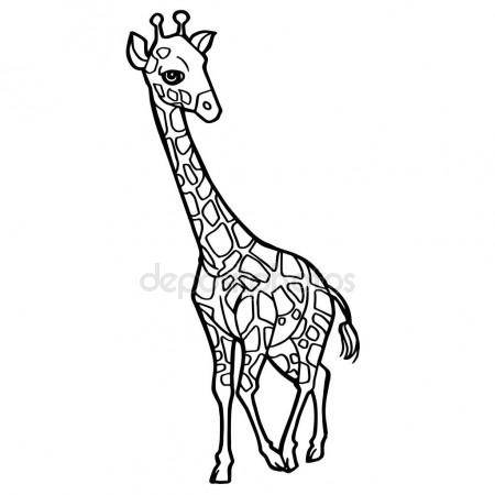 450x450 Coloring Book Giraffe African Savannah Animal Stock Vector