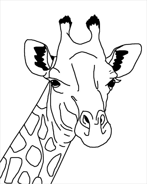 Giraffe Drawing Cute