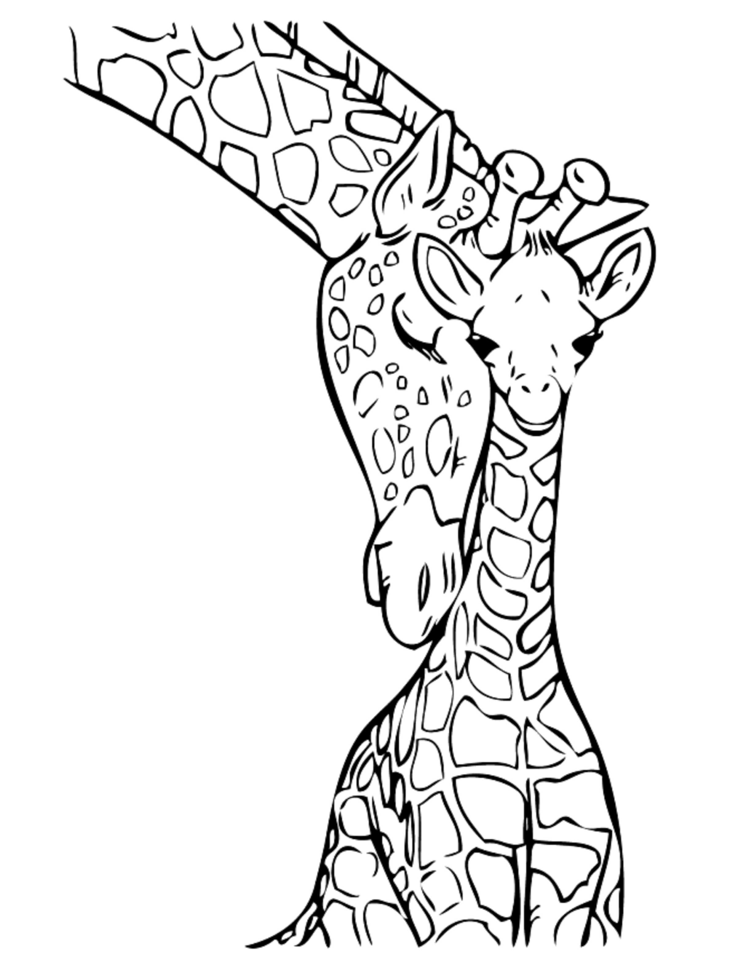 2437x3154 Giraffe Coloring Pages For Girls Preschool In Sweet Draw Image
