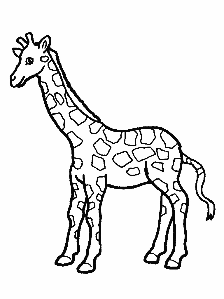 768x1024 Cute Giraffe Coloring Pages