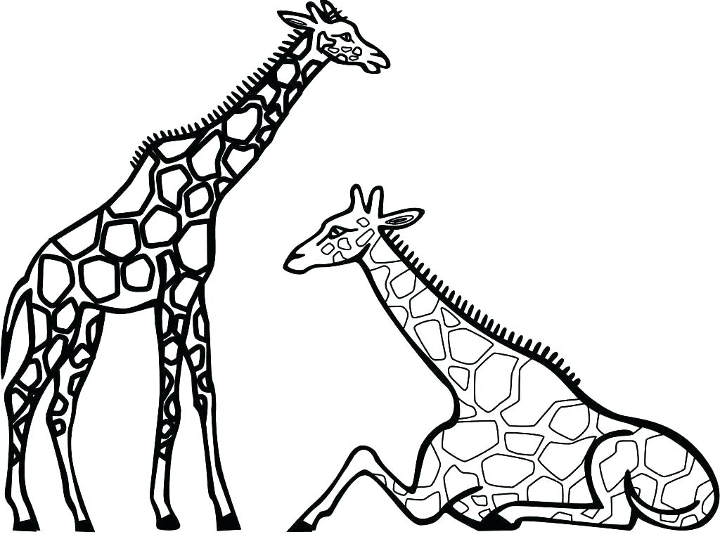 1024x767 Giraffes Coloring Pages Inspirational Cute Giraffe Coloring Pages