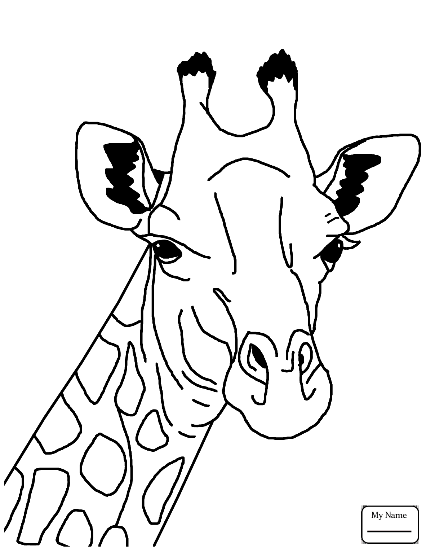 1182x1530 Coloring Pages For Kids Cartoon Giraffe Giraffes Mammals