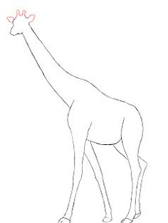 236x314 Drawn Giraffe Side View
