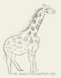 200x255 Learn How To Sketch Animals