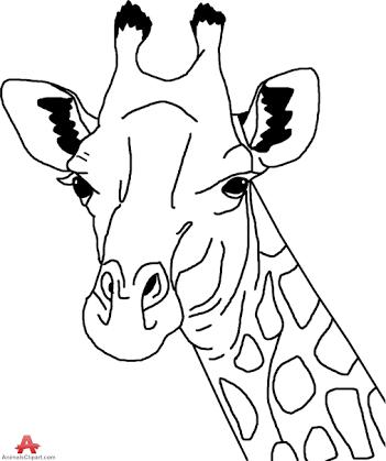 351x419 Giraffe Outline Drawing