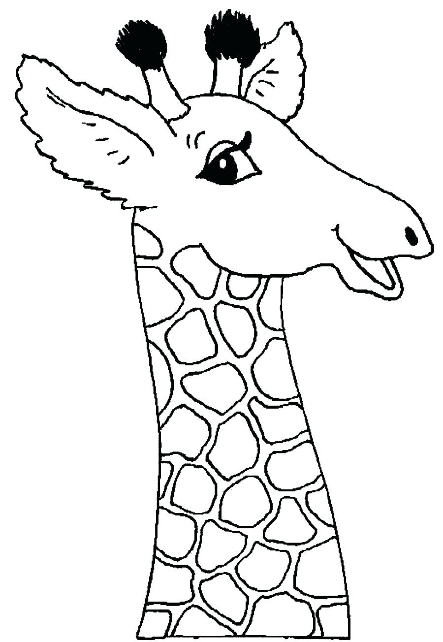 Giraffe Face Drawing at GetDrawings | Free download