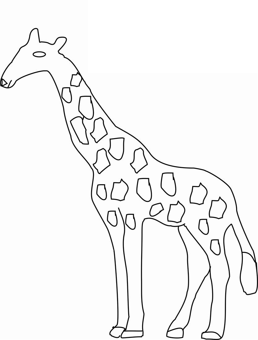 Giraffe Line Drawing at GetDrawings | Free download