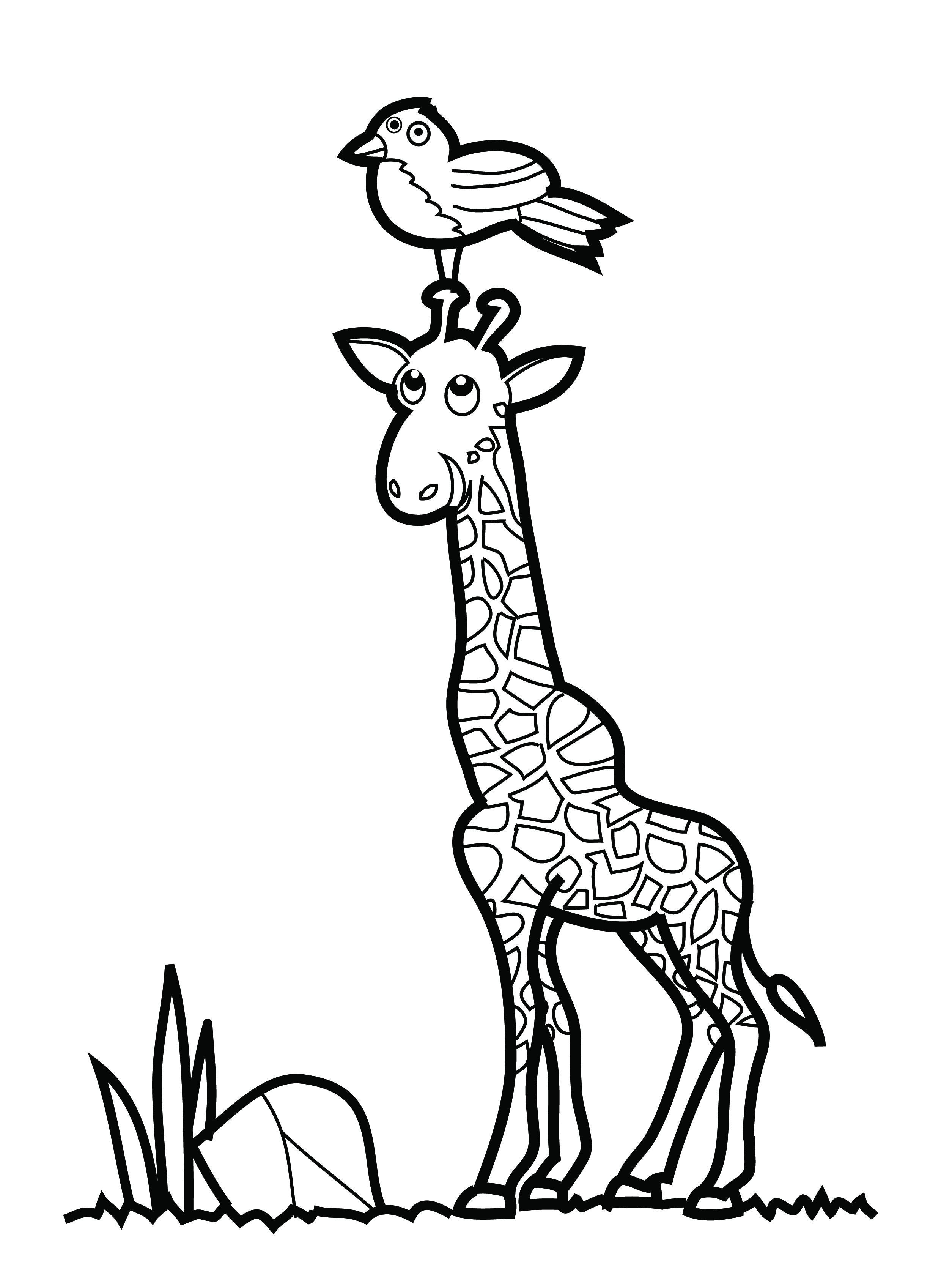 2480x3393 Free Printable Giraffe Coloring Pages For Kids