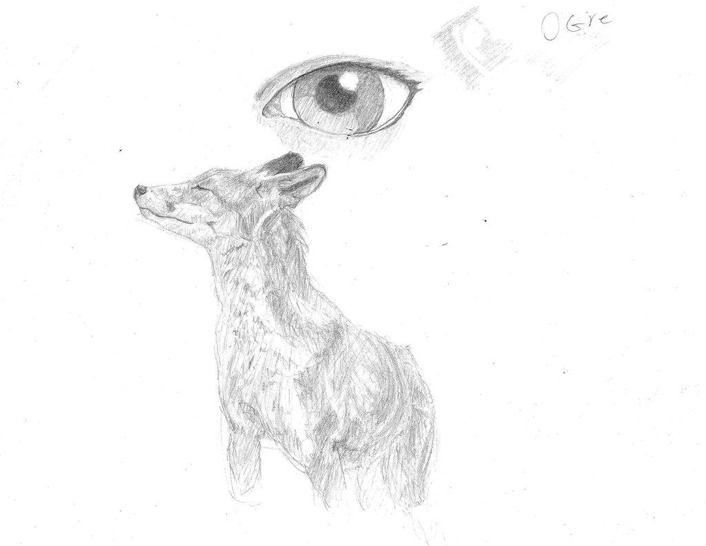 1024x793 Fox By Pencilspecter