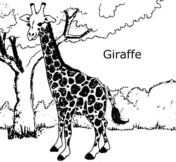 618x568 Giraffe Stencil Printable