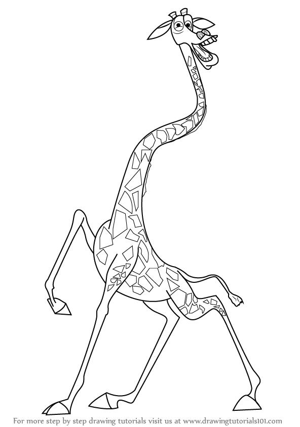 592x844 Learn How To Draw Melman The Giraffe From Madagascar (Madagascar