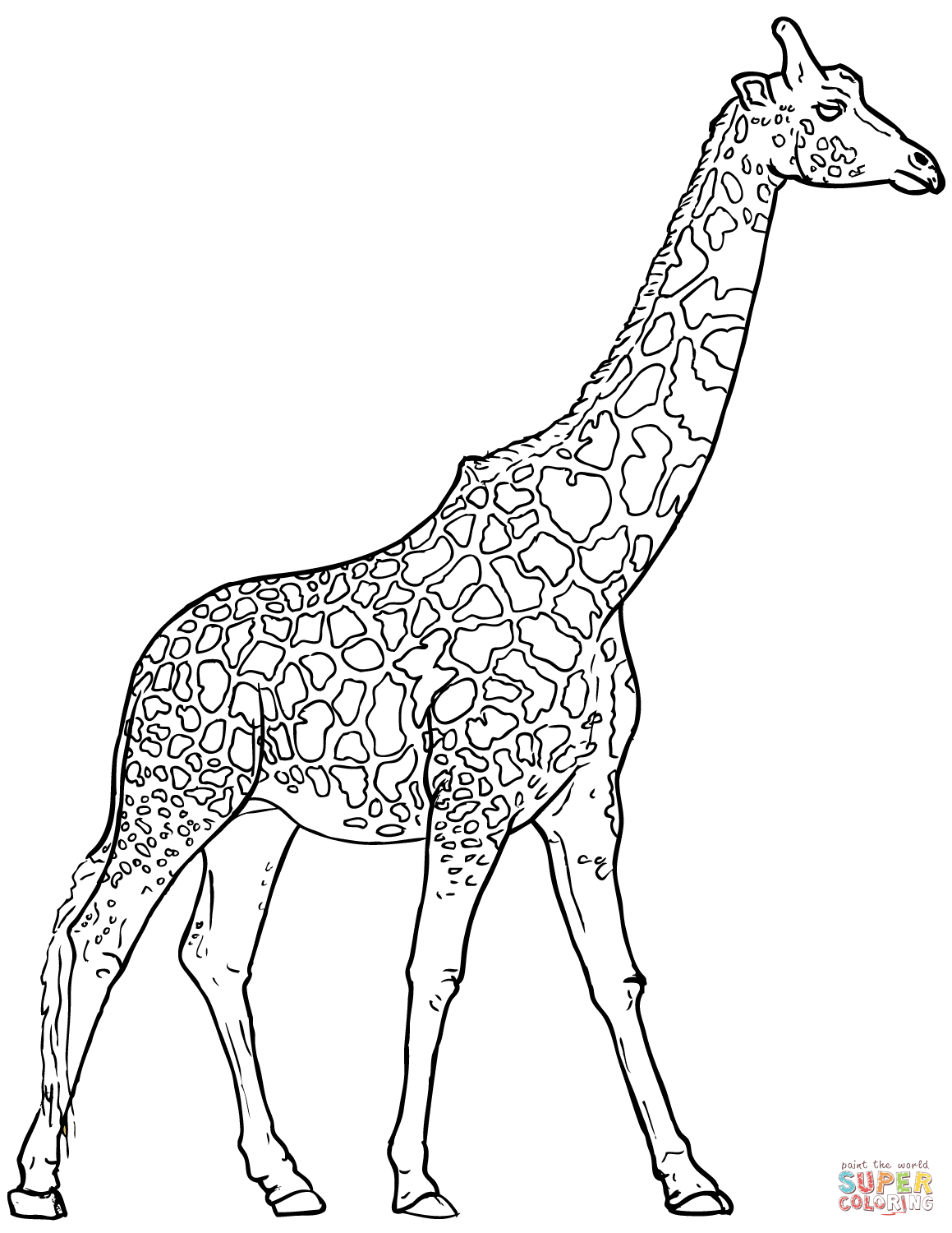 Giraffe Pictures Drawing at GetDrawings Free for