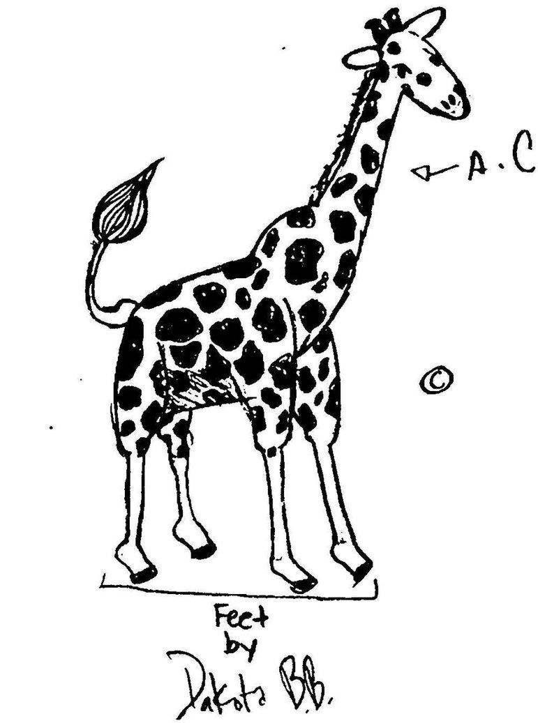 771x1037 Cute Drawings Of Giraffes