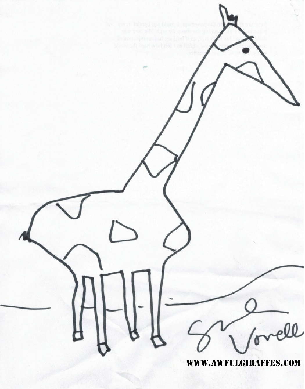 1050x1341 Essayist Sarah Vowell's Awful Giraffe Giraffes Drawn By People