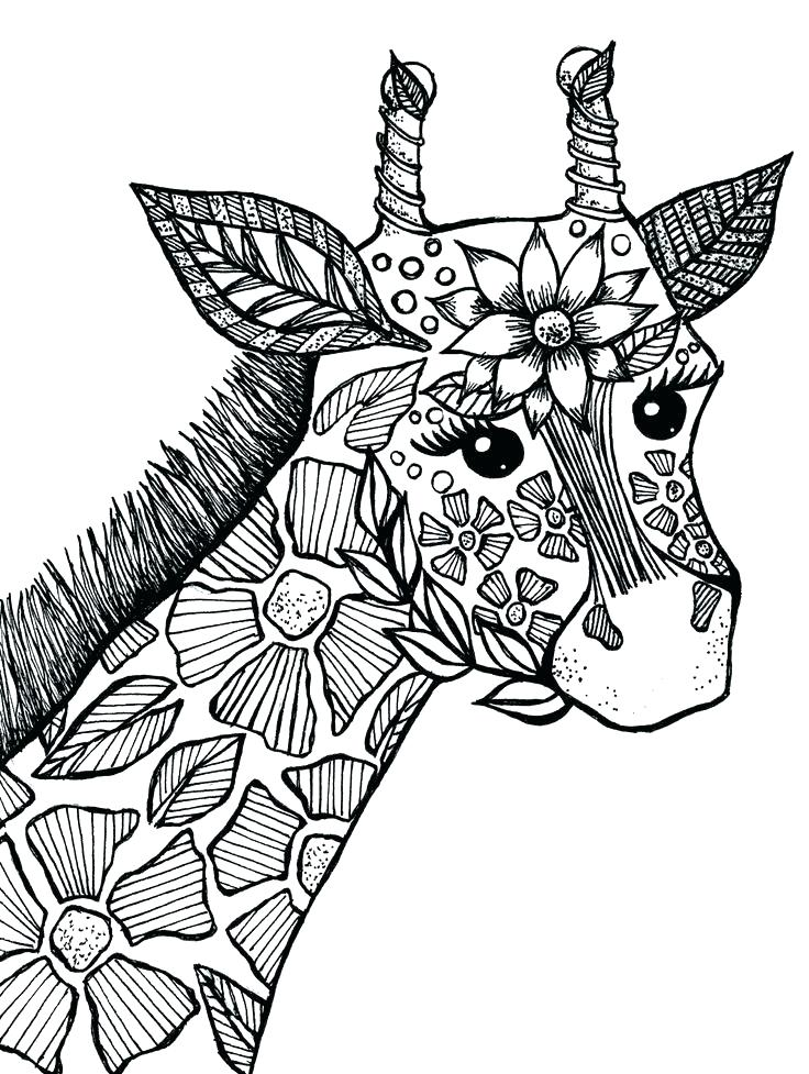 736x977 Giraffes Coloring Pages Coloring Pages Of Animals Also Giraffe